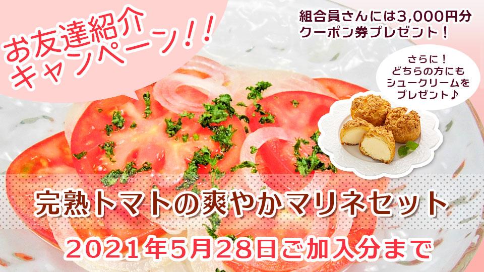 お友達紹介キャンペーン 完熟トマトの爽やかマリネセット           2021年5月28日ご加入分まで           ご紹介いただいたあなたと新しくご加入いただくお友だちにも嬉しい特典がいっぱい♪